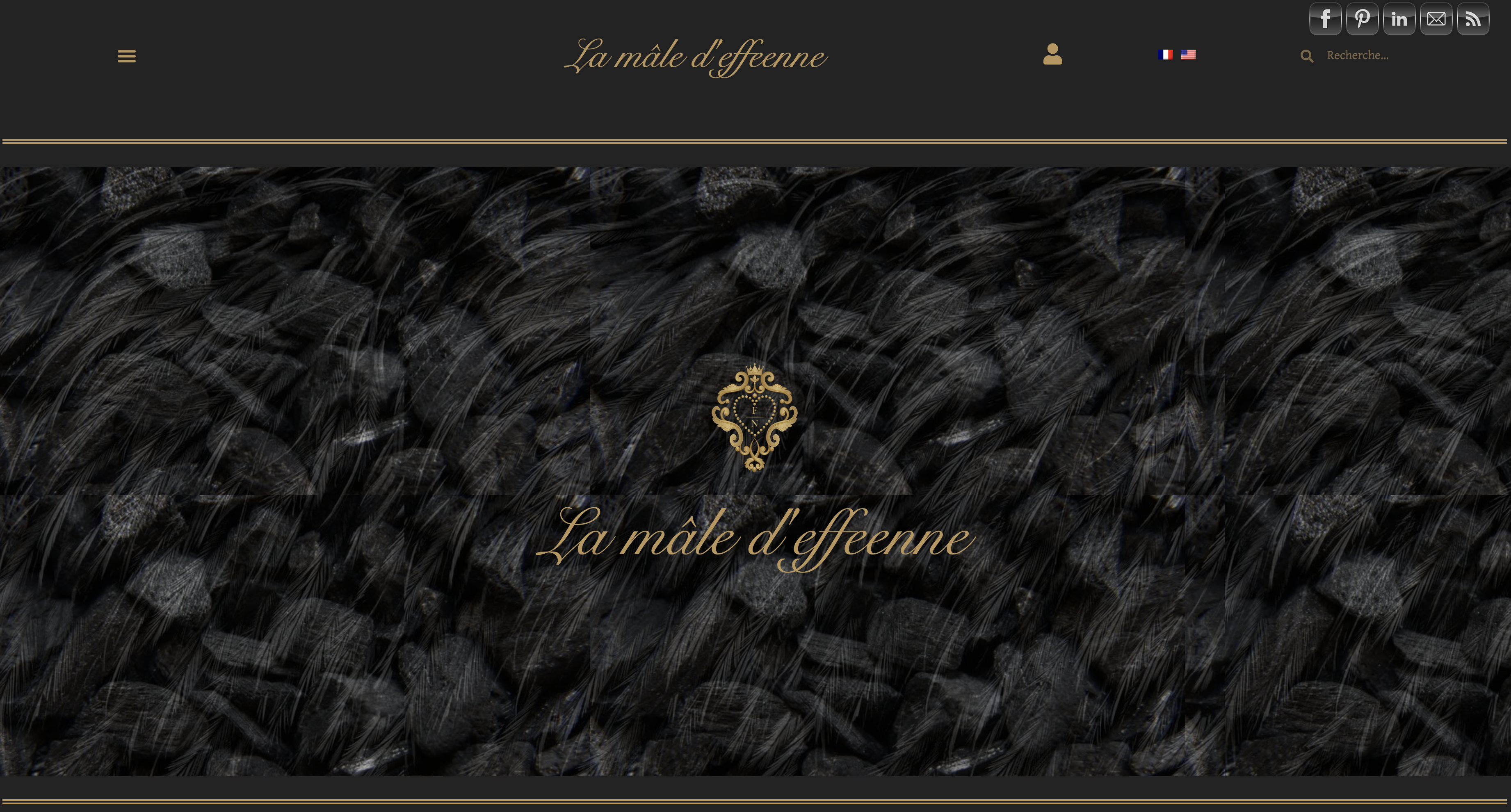 homepage-site-ecommerce-lamaledeffeenne