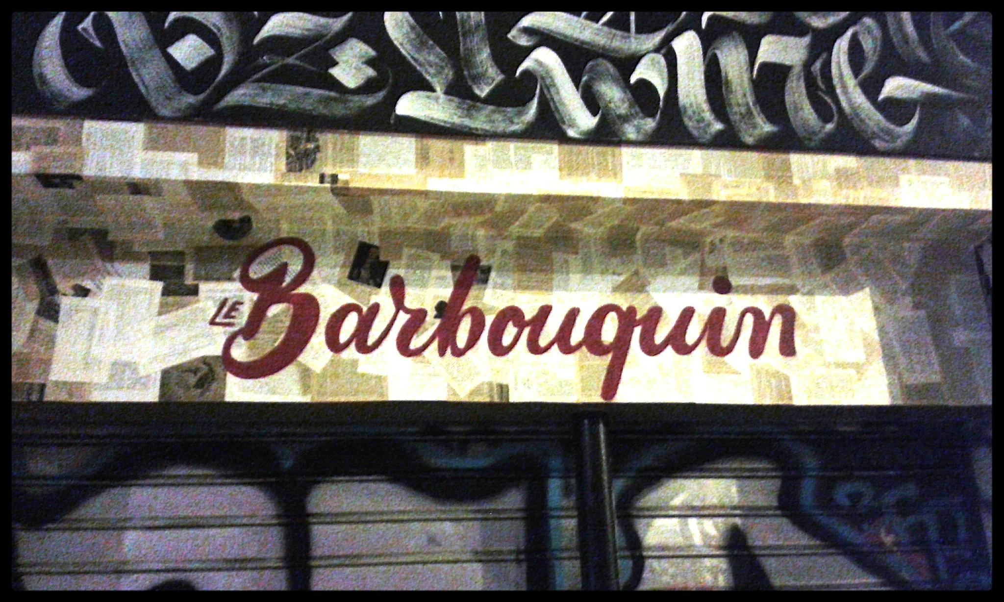 la-male-d-effeenne-barbouquin-les-carnets-découverte-livres